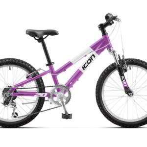 Icon 20″ Girls (Purple)